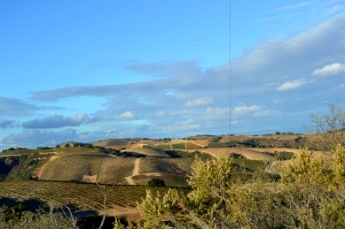 Hills of Paso Robles