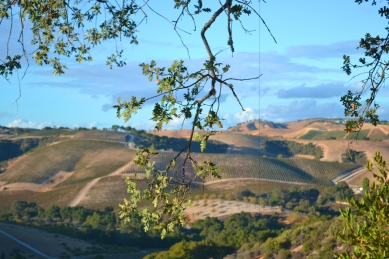 Paso Robles Jeep Tour