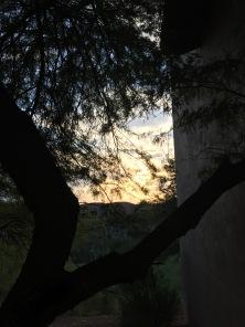 Desert Sunset at the Westin La Paloma