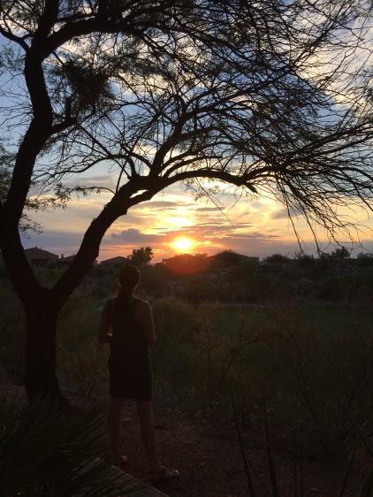 Desert Sunset Watcher